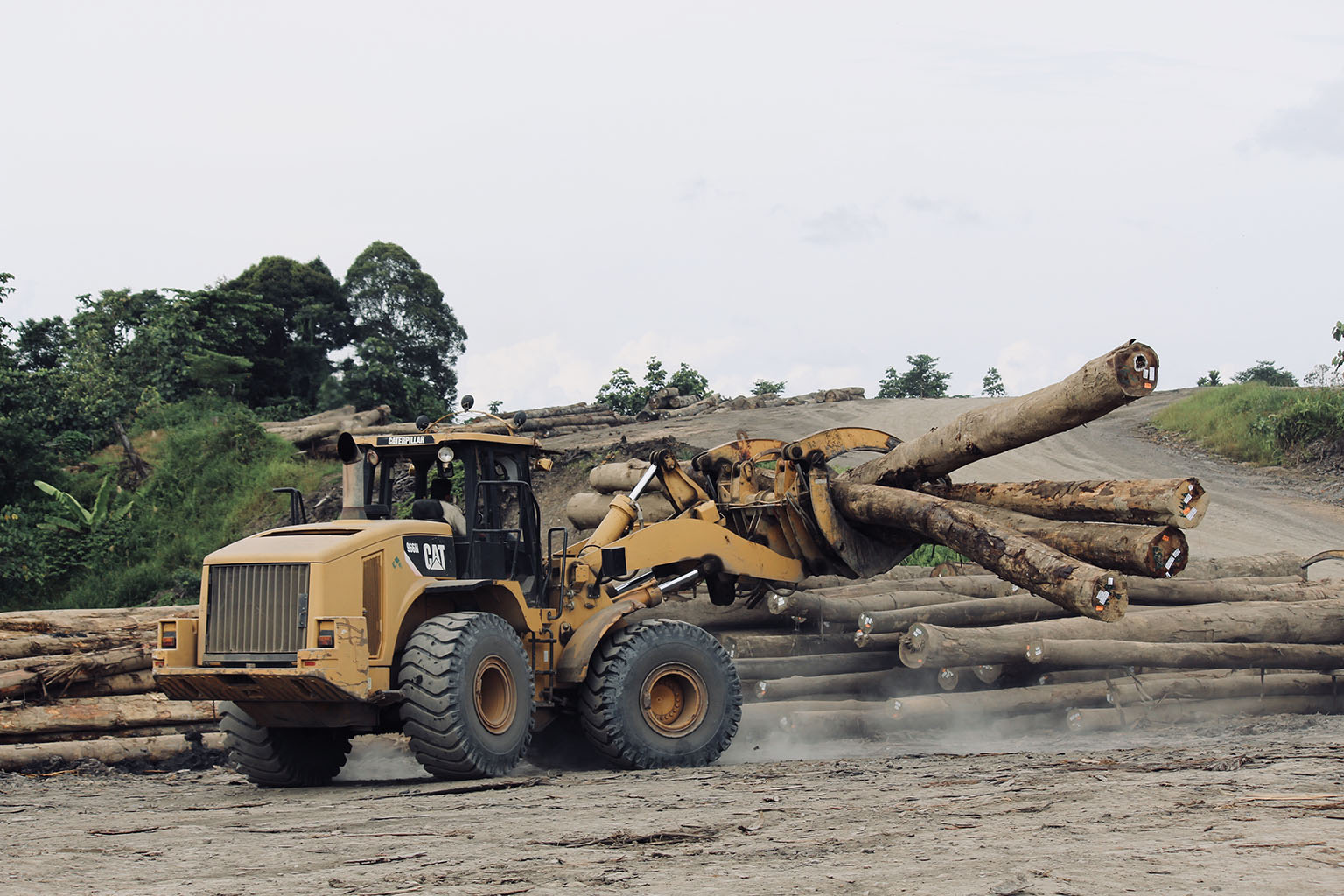 Logging by Samling in the Baram region in July 2018. Photo credit: Fiona McAlpine of The Borneo Project