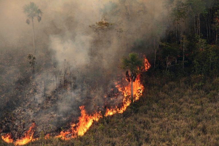 A fire burns in Xingu Indigenous Park in 2016. Image by Ibama via Wikimedia Commons (CC BY-SA 2.0).