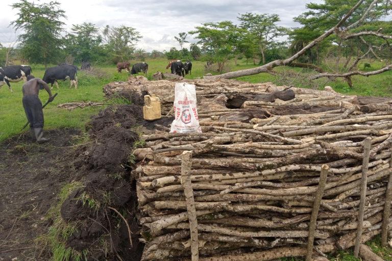 A local chaorcoal producer at work in Kakindo sub county,Kakumiro district-Uganda-BY ALEX