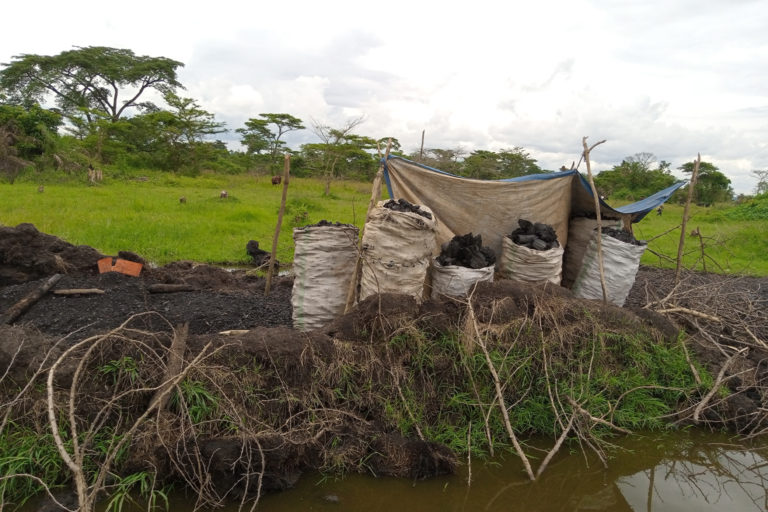 A charcoal production site near a wetland in Kyankwanzi district