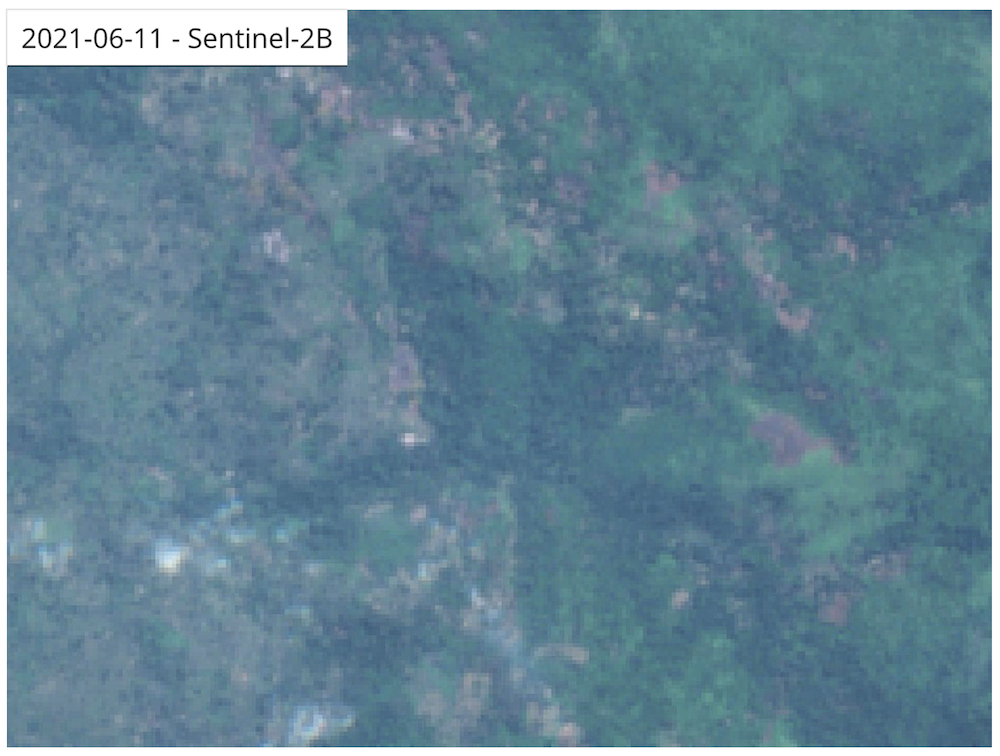 Satellite imagery shows recent clearings in primary forest in southern Virunga National Park.