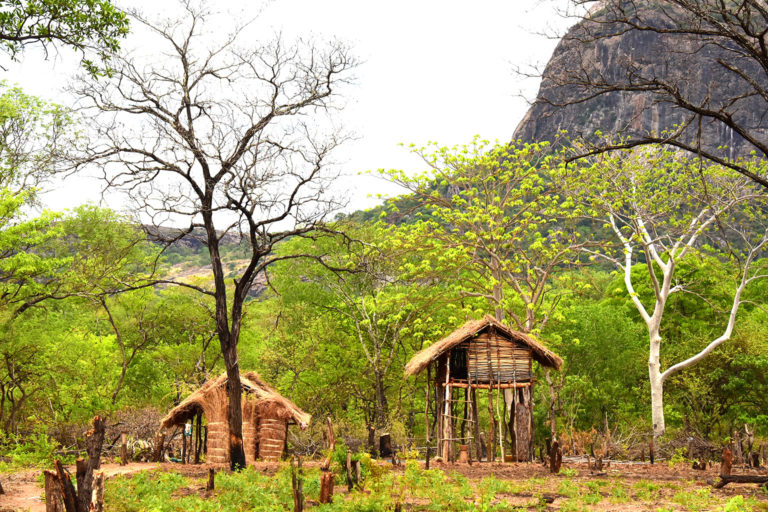 Safe shelters in Niassa Special Reserve. Photo credit: Colleen Begg
