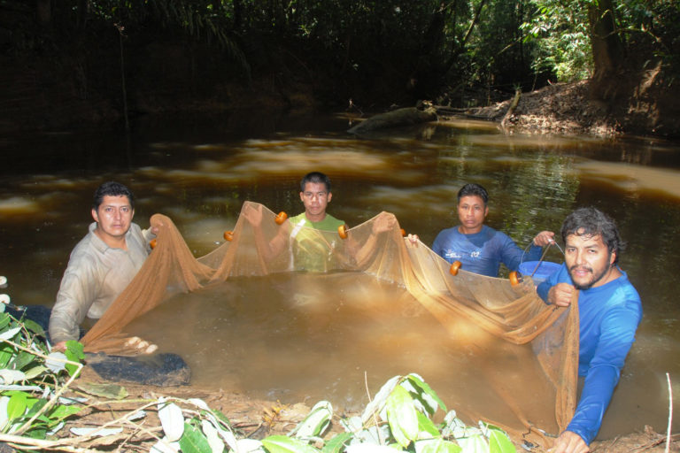 Collecting fish in the newly established Yaguas National Park. Photo credit: Field Museum / Alvaro del Campo