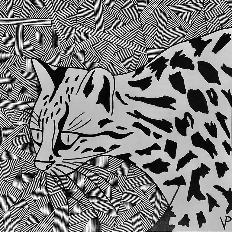 Sketch of oncillas (Leopardus tigrinus)