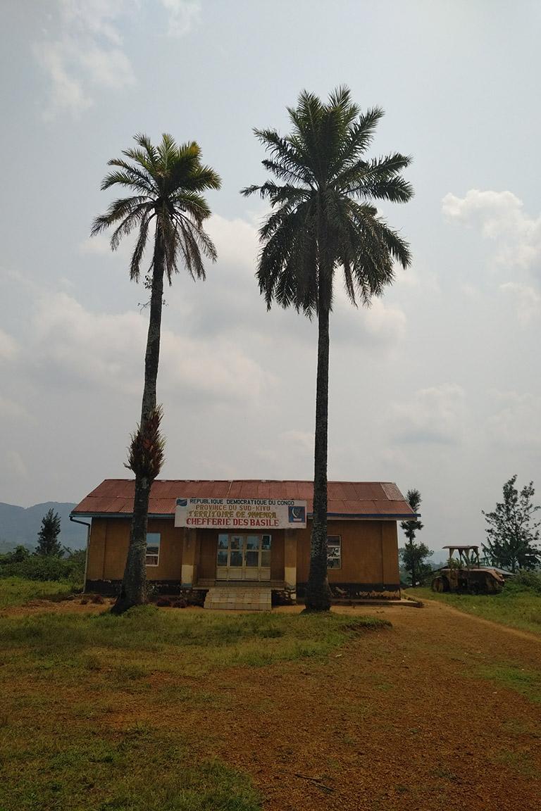 Kahuzi-Biega National Park. Photo credit: Strong Roots Congo.