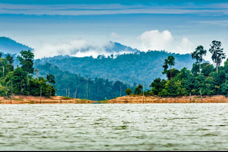 Belum-Temengor-forest