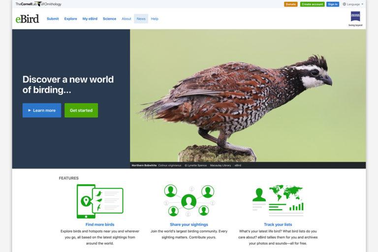 Screenshot of the eBird desktop site.