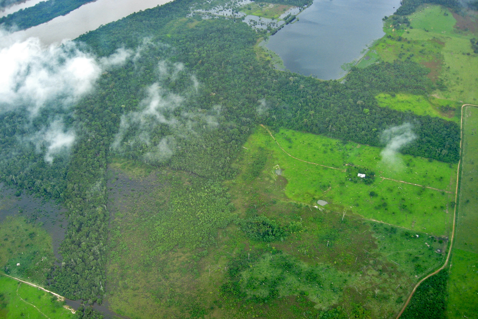 Aerial view of the Brazilian Amazon [or deforestation in the Brazilian Amazon] taken from the small aircraft used to measure carbon emissions. Photo courtesy of Luciana Gatti.