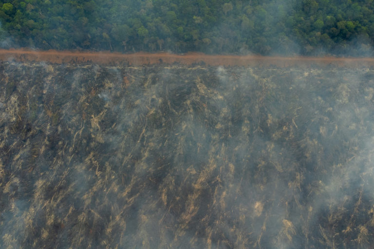 Smoke ascends from what was once a rainforest and is now likely destined for soy production. Image by Kamikia Kĩsêdjê.