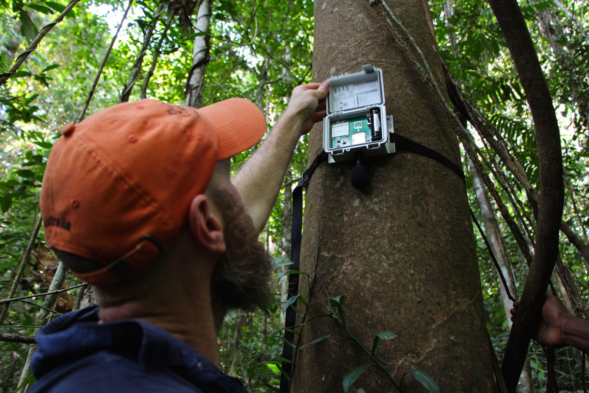 TNC scientist Eddie Game checks an acoustic recorder in Papua New Guinea. Photo © Justine E. Hausheer / The Nature Conservancy