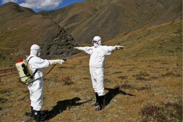Chaoxue-Wu-disinfection-procedure-marmot-plague