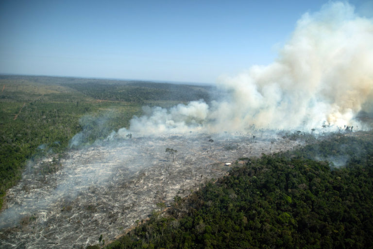 Recently deforested and burnt area in Porto Velho, Rondônia state July 29, 2021. Photo © Christian Braga / Greenpeace