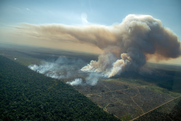Forest fire in a deforested area in an undesignated public forest in Porto Velho, Rondônia on July 29, 2021. Photo © Christian Braga / Greenpeace