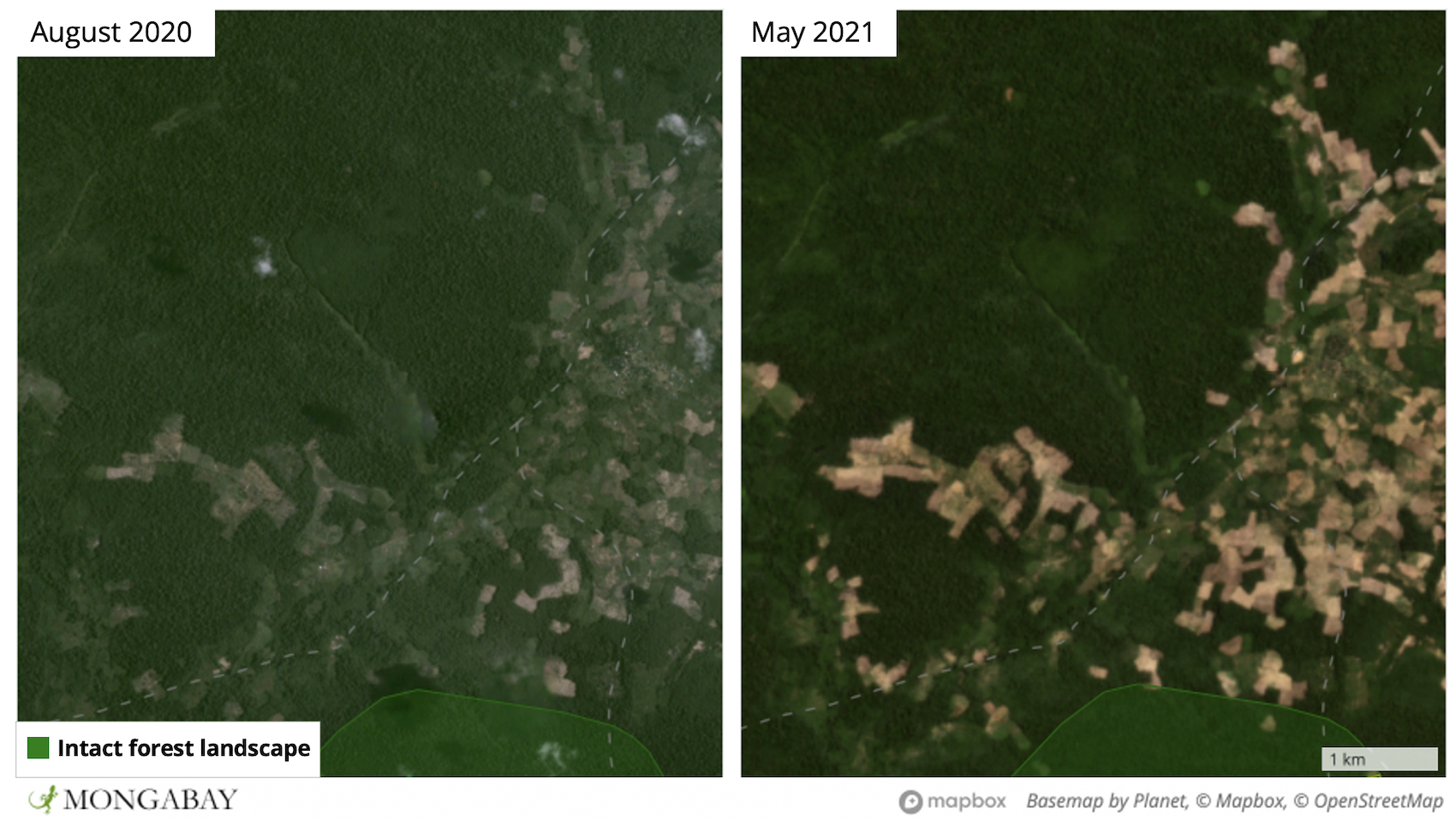 Satellite imagery from Planet Labs shows surging forest loss in the northern portion of Prey Lang - including into the country's last IFL.