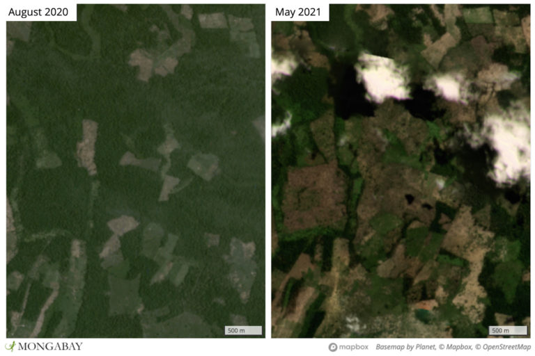 Satellite imagery from Planet Labs shows deforestation expanding in the southern portion of Prey Lang.