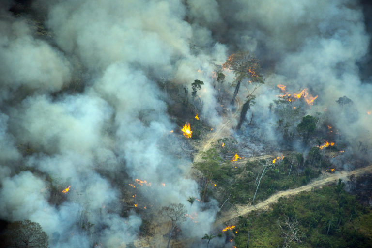Forest fire in a deforested area in an undesignated public forest in Altamira, Pará on Jul 31, 2021. Photo © Christian Braga/Greenpeace