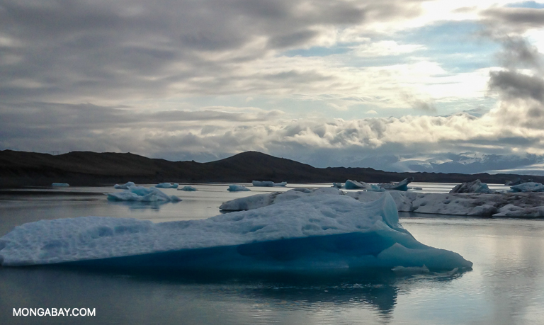 The authors of the IPCC report say that many impacts, such as the continued melting of ice sheets and ice near the poles, will continue throughout the 21st century. Image by John C. Cannon/Mongabay.