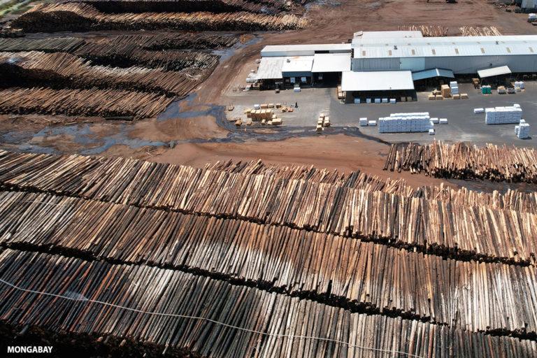 A log yard at a timber processing facility. Photo credit: Rhett A. Butler