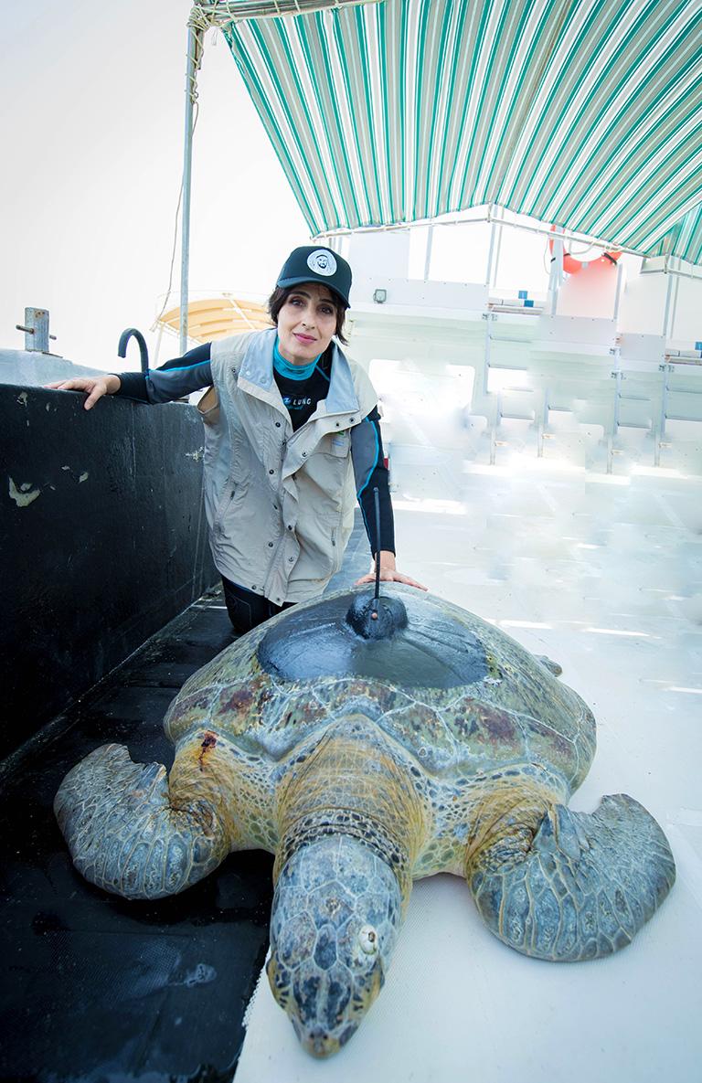 Razan Al Mubarak with one of the turtles before release.