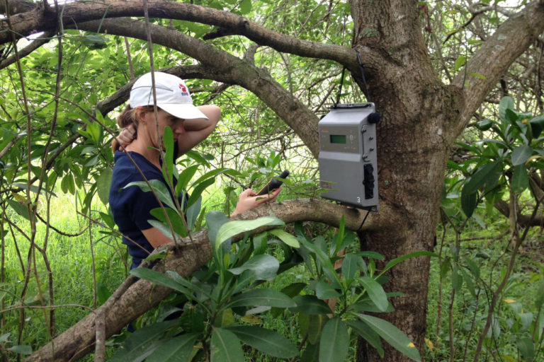 Dr. Jeanne Tarrant, Programme Manager of The Endangered Wildlife Trust, in the field. Photo credit: The Endangered Wildlife Trust