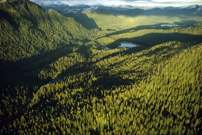 Tongass National Forest in Alaska. Photo © Bruce Dale/National Geographic Creative