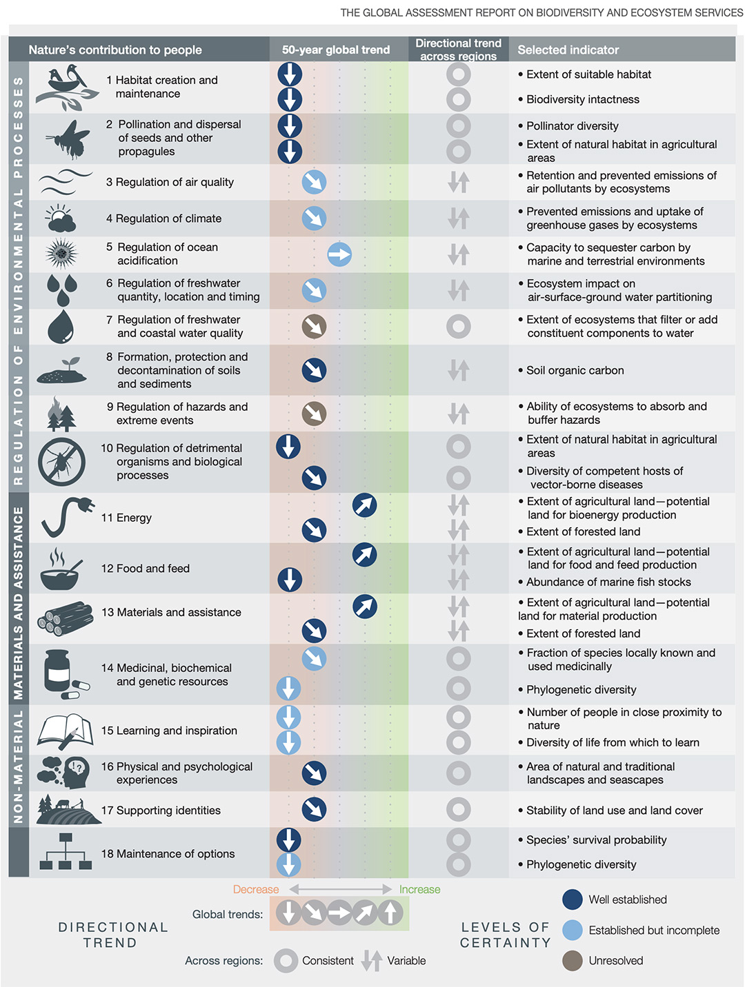 Global trends in the capacity of nature to sustain contributions to good quality of life from 1970 to the present, which show a decline for 14 of the 18 categories of nature's contributions to people analyzed. THE GLOBAL ASSESSMENT REPORT ON BIODIVERSITY AND ECOSYSTEM SERVICES
