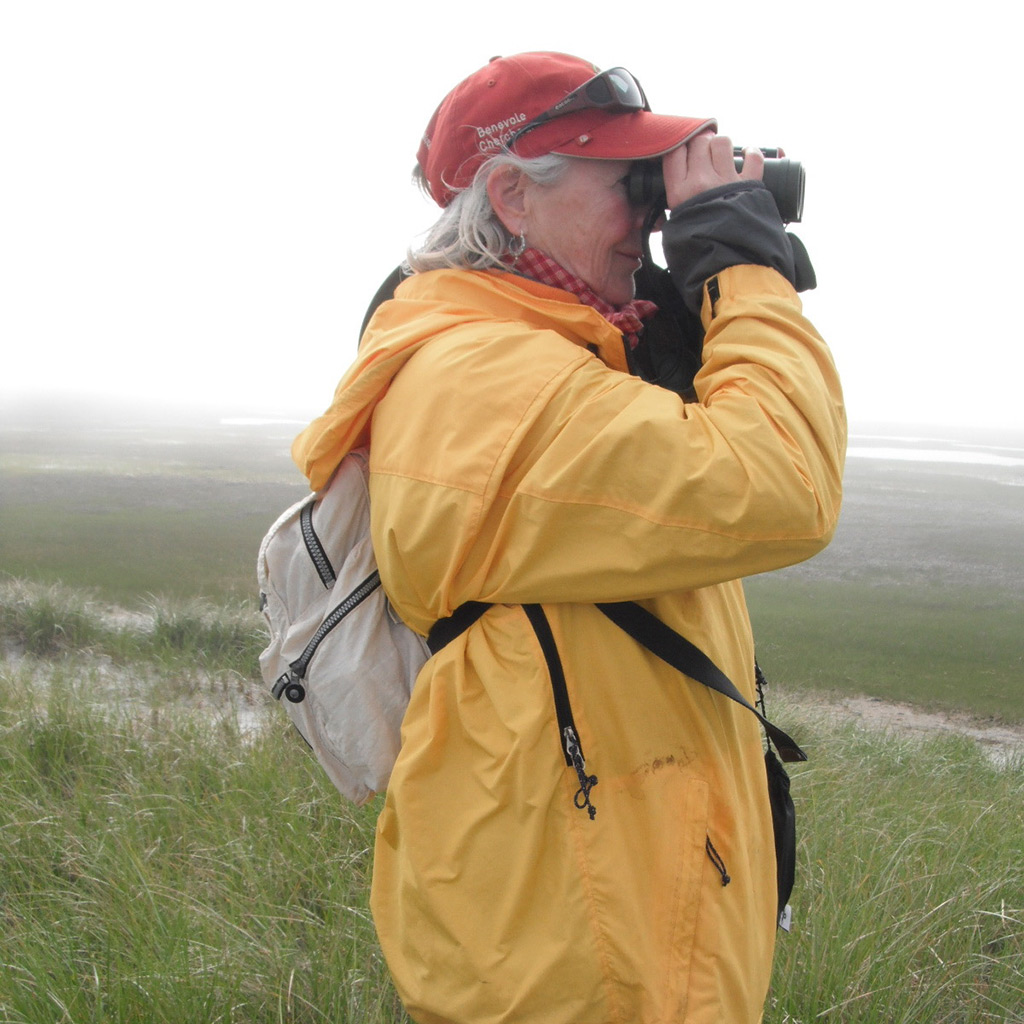 Birding on Cape Sable. Photo credit: Jane Alexander