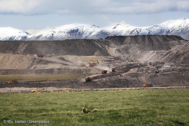 A fox is seen in front of the Qinghai Coking Coal Group opencast coal mine, with the Chi-lien mountains in the background. A Greenpeace investigation in 2014 revealed the presence of a giant coal mine that was illegally encroaching on a nature reserve at the source of the Yellow River. Greenpeace found that the mining project violated water protection laws and local nature reserve regulations. Photo © Wu Haitao / Greenpeace