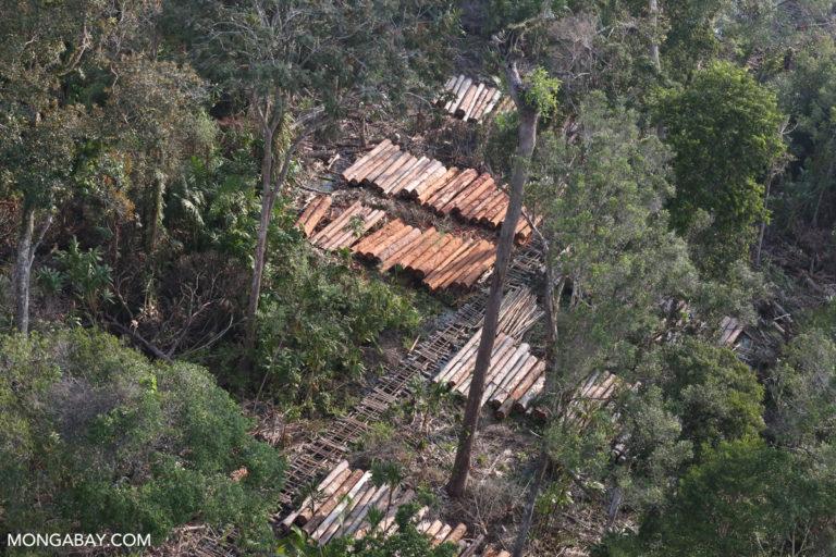Logging concession in North Sumatra, Indonesia. Photo credit: Rhett A. Butler