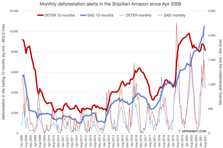 Monthly deforestation alert data from INPE DETER and Imazon SAD.