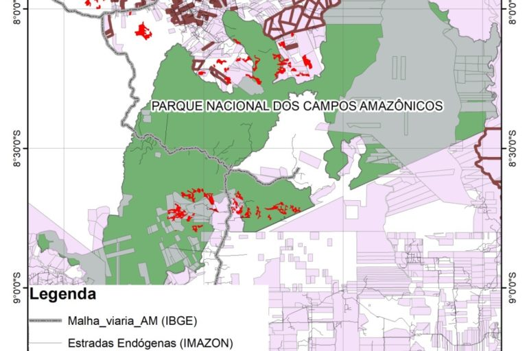 Map showing illegitimate land registration areas in Campos Amazonicôs National Park. Courtesy of Pablo Pacheco, Idesam/Rede Simex.