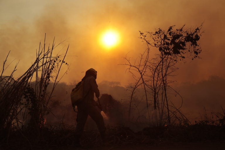 The Pantanal is burning again. Will it be another devastating year?