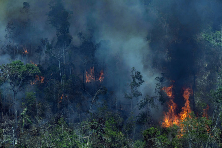 Fire in a degraded forest area being cleared in Novo Aripuanã, Amazonas state. Overflights organized by the Amazon in Flames Alliance -- Amazon Watch, Greenpeace Brazil and the Brazilian Climate Observatory -- between September 13th and 17th documented land use change and fire around the cities of Porto Velho, Rondônia, and Lábrea, Amazonas. Photo © Victor Moriyama / Amazônia em Chamas (Amazon in Flames Alliance)