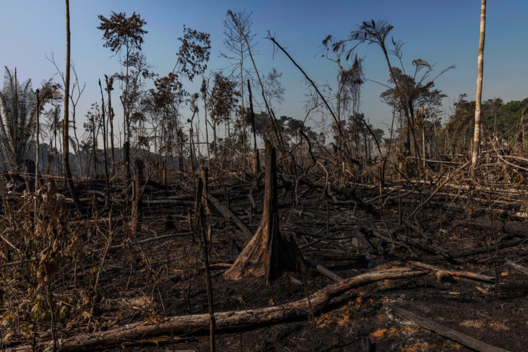 Aerial view of an area in the Amazon deforested for cattle pasture in Candeias do Jamari, Rondônia state. Overflights organized by the Amazon in Flames Alliance -- Amazon Watch, Greenpeace Brazil and the Brazilian Climate Observatory -- between September 13th and 17th documented land use change and fire around the cities of Porto Velho, Rondônia, and Lábrea, Amazonas. Photo © Victor Moriyama / Amazônia em Chamas (Amazon in Flames Alliance)