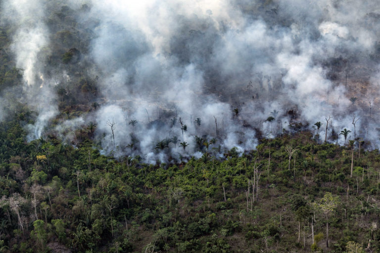 Aerial view of an area in the Amazon deforested for cattle pasture in Porto Velho, Rondônia state. Overflights organized by the Amazon in Flames Alliance -- Amazon Watch, Greenpeace Brazil and the Brazilian Climate Observatory -- between September 13th and 17th documented land use change and fire around the cities of Porto Velho, Rondônia, and Lábrea, Amazonas. Photo © Victor Moriyama / Amazônia em Chamas (Amazon in Flames Alliance)