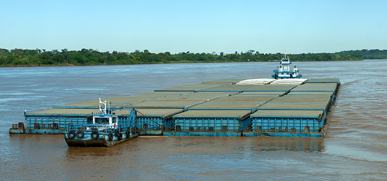 Investment in bulk transport systems is a priority as inefficient trucking systems are replaced by waterways and railroads: a barge convoy on the Río Madeira (top); rail cars being loaded at the grain terminal at Rononópolis, Mato Grosso (below).