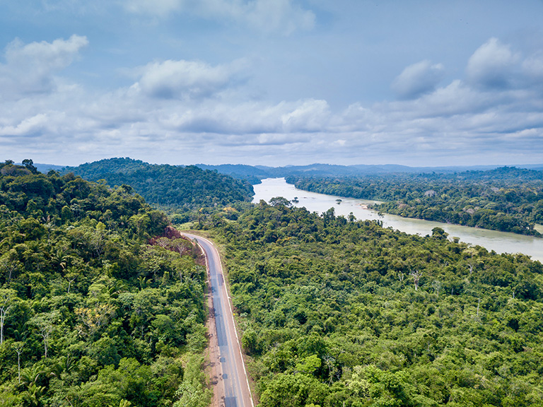 The Ferrograu will parallel BR-163 between Sinop (Mato Grosso) and Miritituba (Pará); the most controversial stretch will cross Jamanxim National Park where the current right-of-way is only 200 meters wide. Construction is contingent on the approval of an environmental evaluation being financed from the President's office by the Programa de Parcerias de Investimentos. © PARALAXIS / shutterstock.com