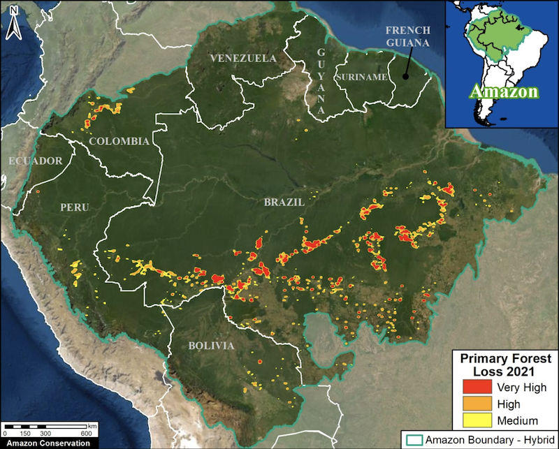 Deforestation hotspots across the Amazon in 2021 (as of September 18). Data: University of Maryland (GLAD), Amazon Conservation Association/MAAP. Image courtey of MAAP.