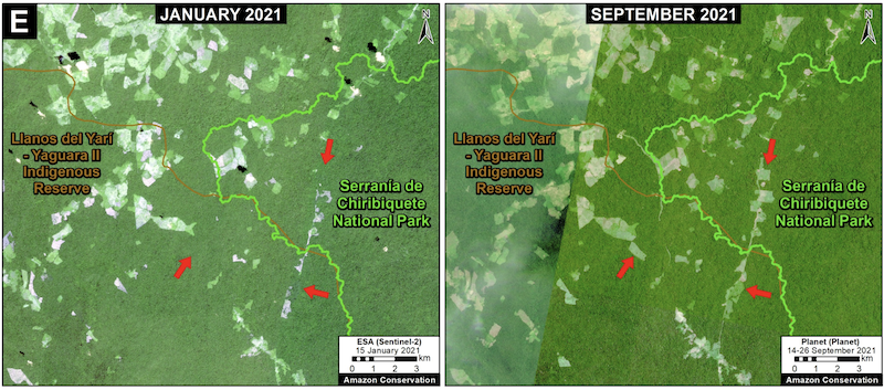 Deforestation in the Colombian Amazon between January (left panel) and September (right panel) of 2021. Data: Planet, European Space Agency. Image courtesy of MAAP.