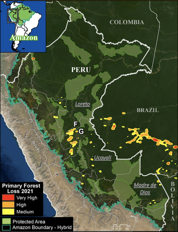 Peru Base Map. Deforestation hotspots in the Peruvian Amazon (as of September 18). Data: University of Maryland (GLAD), Amazon Conservation Association/MAAP. Image courtesy of MAAP.