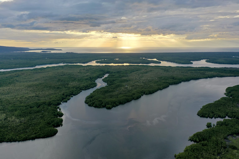 Peam Krasop Wildlife Sanctuary contains one of Southeast Asia's largest and best-preserved mangrove forests. Sub-decree No. 30 will remove 7,325 hectares (18,100 acres) of land from the protected area. Image by Andy Ball.