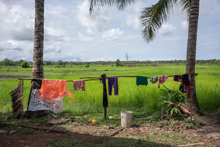 Clothes dry in front of a portion of Kheang Ra's rice fields. While he waits to be issued a land title, he's concerned that his land will be grabbed by powerful individuals. Image by Andy Ball.