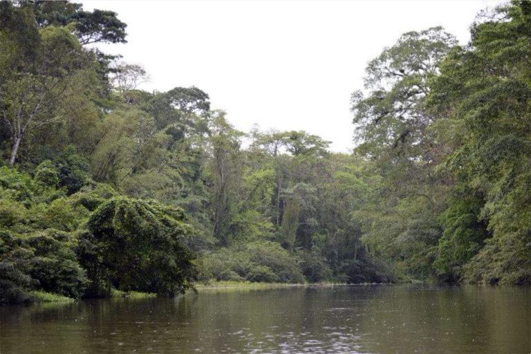 River in Bosawas, Nicaragua. Photo credit: Eileen Mairena