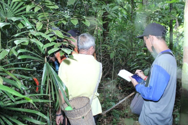 Embracing local partners and communities is key to secure forest conservation programs. Photo is taken from community-protected forests in West Kalimantan. Source: Indonesian Oil Palm Farmer Union (SPKS)