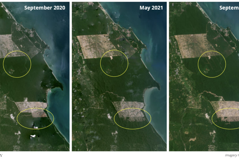 Satellite imagery show clearing activity accelerated in the latter half of 2021. Source: Planet Labs.