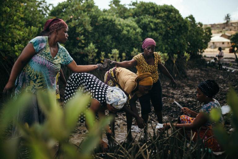 Planting mangroves at Junda village, near Mombasa, Kenya. Image by Kang Chun Cheng.