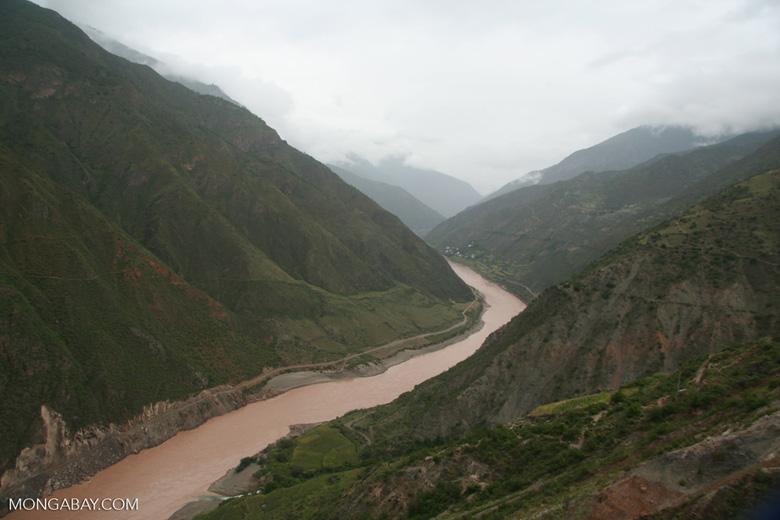 The upper Yangtze river in Tibetan Yunnan, southern China. Photo by Rhett Butler.