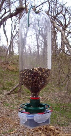 RFID bird feeder_animalmigration dot org