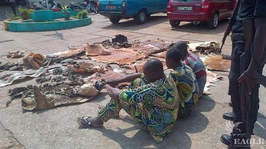 3 traffickers arrested in Benin in June2015_credit EAGLE