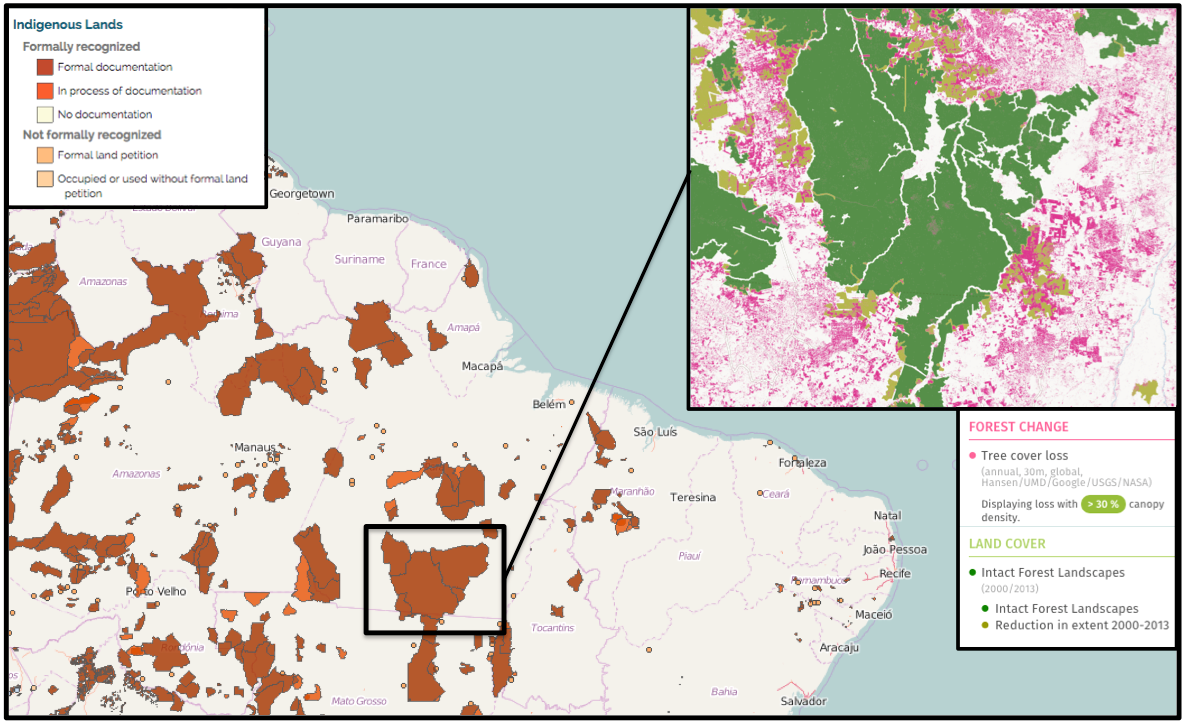 Previous research has found that land managed by local communities tends to be better protected from major human-caused disturbances like deforestation than land managed by private organizations and governments. For example, Global Forest Watch shows the indigenous territories held by the Kayapo, Menkragnoti, Badjonkore, Bau, and Panara communities in the Brazilian state of Para lost much less tree cover and still contain much more extensive intact forest landscapes (large areas of primary forest) than land outside their borders. Specifically, this indigenous territory lost less than 1 percent of its tree cover compared to 19 percent outside. Map composed of imagery from LandMark and Global Forest Watch.